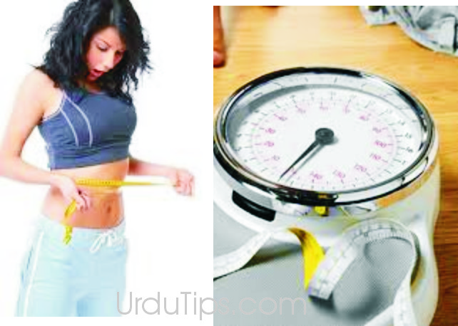 Weight Loss Tips | Tips to Lose Weight